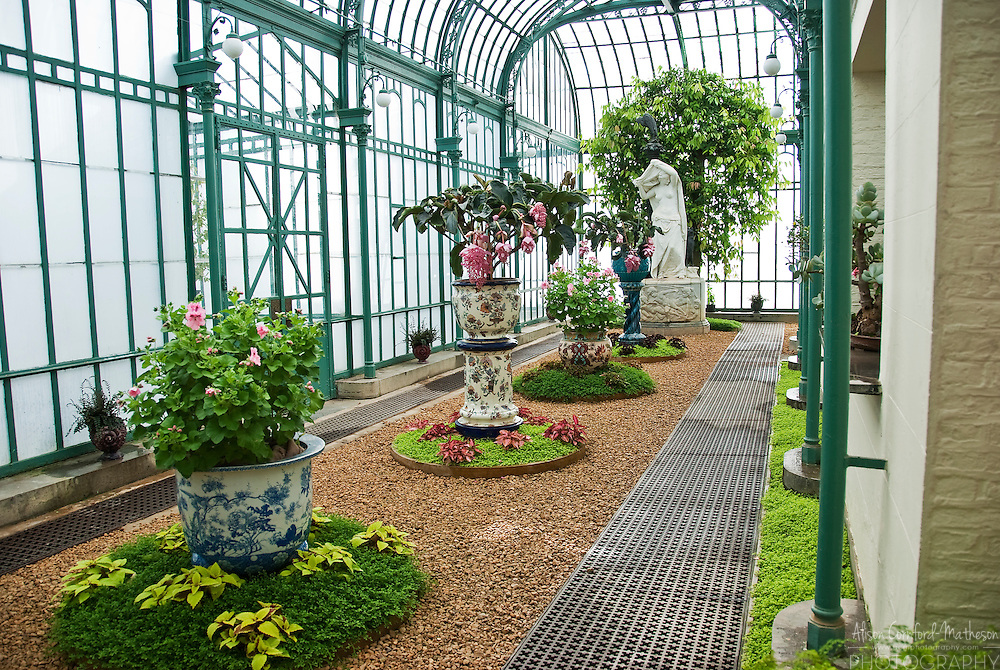 Inside the Belgian Royal Greenhouses.