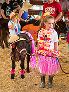 """27 JUNE 2019 - CENTRAL CITY, IOWA: MOLLY DOWNEY, 6, and her calf, Rainbow Dash at the Kiddie Calf Show at the Linn County Fair. Participants dressed the calves up to reflect """"Fairadise,"""" the theme of the 2019 Linn County Fair. Summer is county fair season in Iowa. Most of Iowa's 99 counties host their county fairs before the Iowa State Fair, August 8-18 this year. The Linn County Fair runs June 26 - 30. The first county fair in Linn County was in 1855. The fair provides opportunities for 4-H members, FFA members and the youth of Linn County to showcase their accomplishments and talents and provide activities, entertainment and learning opportunities to the diverse citizens of Linn County and guests.           PHOTO BY JACK KURTZ"""