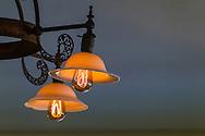 Carbonized bamboo-filament lightbulbs, Edison's Seminole Lodge winter home, Edison & Ford Winter Estates, Fort Myers, Florida