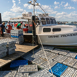 Lobster bins fill the water next to the boat 'Divine Providence' and the dock at Great Wass Lobster in Beals, Maine.