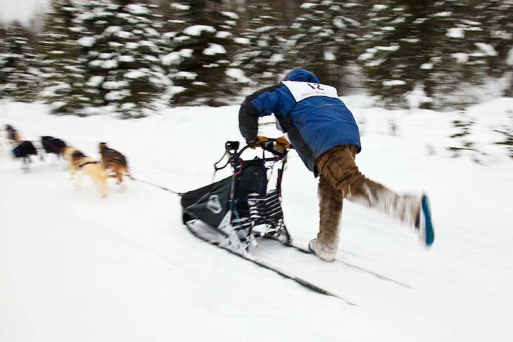 Musher Shane Goosen and sled dogs in the Fur Rendezvous World Sled Dog Championships on the Campbell Creek Trail in Anchorage, Alaska. Southcentral. Afternoon.