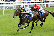 SPARTAN FIGHTER (1) ridden by Daniel Tudhope and trained by Declan Carroll winning The Acturis Irish Stallion Farms EBF Novice Stakes over 5f (£15,000)  during the John Smiths Cup Meeting at York Racecourse, York, United Kingdom on 12 July 2019.