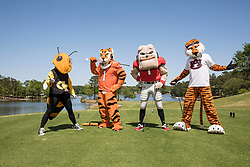 General images of the Georgia Bulldogs mascot Hairy Dawg, Auburn Tigers mascot Aubie the Tiger, Clemson mascot The Tiger and Georgia Tech mascot Buzz as they play golf during the Chick-fil-A Peach Bowl Mascot Challenge at the Oconee Golf Course at Reynolds Plantation, Sunday, April 29, 2018, in Greensboro, Georgia. (Paul Abell via Abell Images for Chick-fil-A Peach Bowl Challenge)