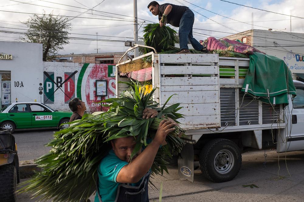 Workers. San Miguel de Allende, Mexico.