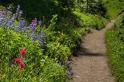 Silver Creek Trail, Crystal Mountain Washington