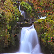 Sweet Creek Falls - Mapleton, Oregon