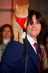 Bob the cat and James Bowen arriving at the World Premiere of A Street Cat Named Bob at the Curzon Mayfair on November 3 2016 in London. EXPA Pictures &copy; 2016, PhotoCredit: EXPA/ Avalon/ Famous<br /> <br /> *****ATTENTION - for AUT, SLO, CRO, SRB, BIH, MAZ, SUI only*****
