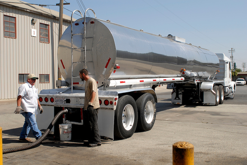 San Jose Tallow Cie delivers the yellow grease by tanker to BIOEASI plant in Gonzales. BIOEASI, Energy Alternative Solutions Inc. was founded in 2006 and recycles 150,000 pounds of waste vegetable oil into biodiesel each week..California, USA, September 2008