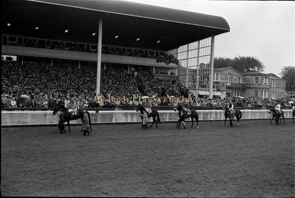 29/06/1963<br /> 06/29/1963<br /> 29 June 1963<br /> Irish Sweeps Derby at the Curragh Racecourse, Co. Kildare. Image shows the runners on the track in front of the stand before the race.