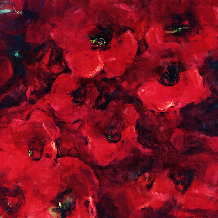 An impression of poppies