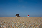"Families admire Scallop, a 4 metre high steel sculpture of two interlocking scallop shells on Aldeburgh beach dedicated to Benjamin Britten. Hambling's Scallop (2003) stands on the north end of Aldeburgh beach. It is a tribute to Benjamin Britten and is pierced with the words ""I hear those voices that will not be drowned"" from his opera Peter Grimes."