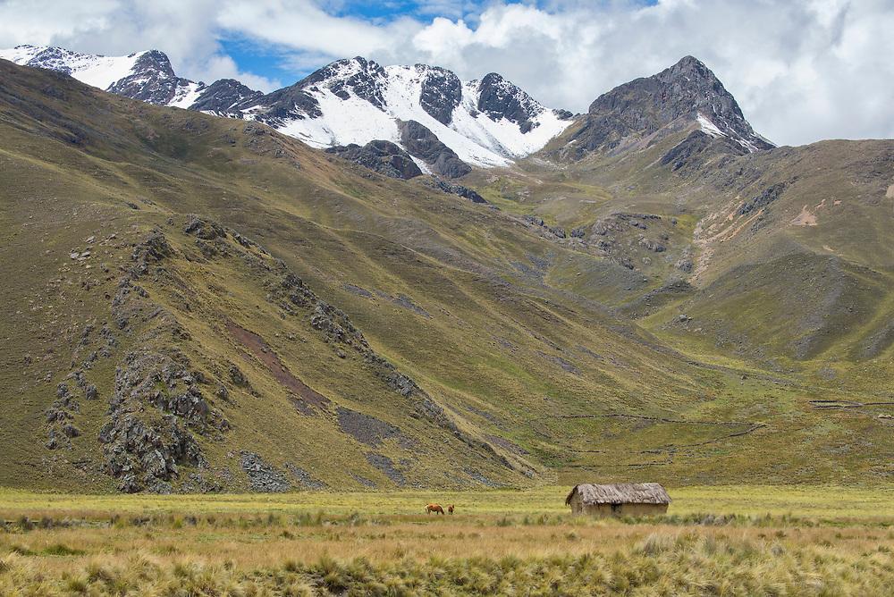 South America, Peru,Cuzco, Andes mountains, Altiplano, hut south of Cuzco