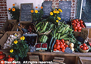 Roadside Produce Stand, Tomatoes and Corn, Eastern PA