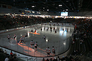 The RIT men's hockey team takes the ice before a game against St. Lawrence University at the Gene Polisseni Center in Rochester, New York on Friday, October 10, 2014.
