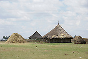 Ethiopia, thatch huts in a rural scene
