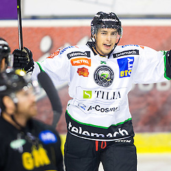 20140817: SLO, Ice Hockey - Friendly match, HDD Telemach Olimpija vs Nottingham Panthers