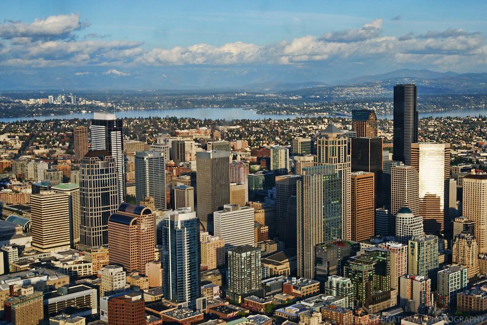 Skylines of Seattle & Bellevue