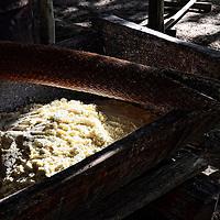 Harina de Yuca secandose. Kamarata. Edo. Bolivar. Cassava flour. Kamarata Edo. Bolivar. Febrero 23, 2013. Jimmy Villalta.