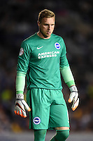 Brighton & Hove Albion goalkeeper David Stockdale