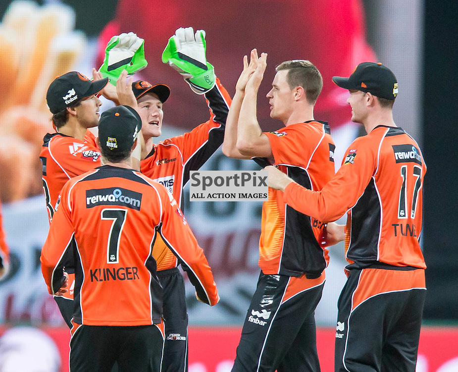KFC Big Bash League T20 2015-16 , Sydney Thunder v Perth Scorchers, Spotless Stadium; 7 January 2016<br /> Perth Scorchers celebrate the wicket of Sydney Thunder Aiden Blizzard lbw bowled Perth Scorchers Jason Behrendorff