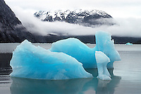 Icebergs calved from Portage Glacier in Chugach National Forest; Southcentral Alaska