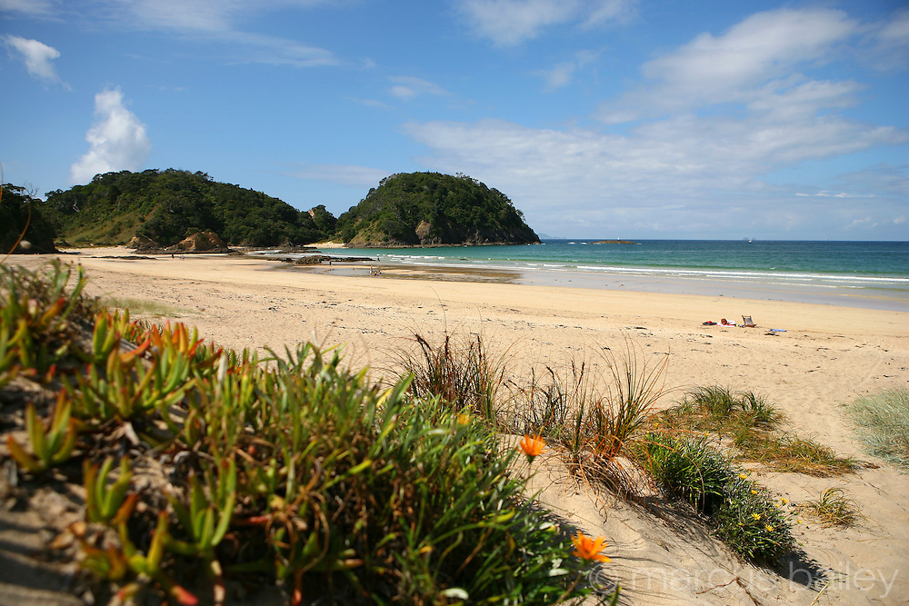 How Far From New Zealand To Great Barrier Island