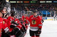 KELOWNA, CANADA - MARCH 3:  Josh Paterson #17 of the Portland Winterhawks celebrates a second period goal against the Kelowna Rockets on March 3, 2019 at Prospera Place in Kelowna, British Columbia, Canada.  (Photo by Marissa Baecker/Shoot the Breeze)