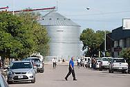 Soja en Argentina