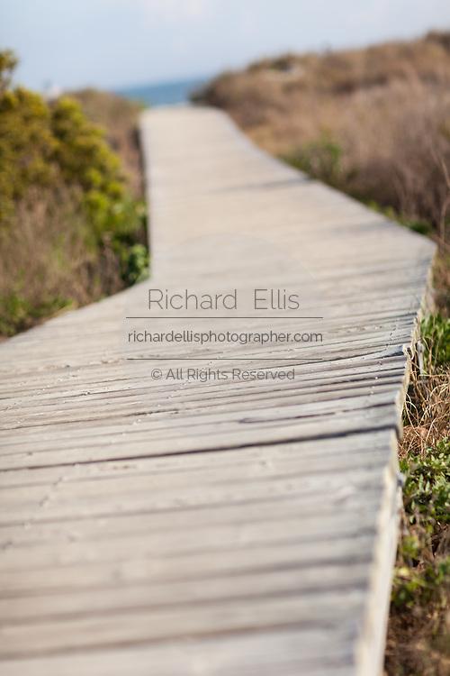 Boardwalk to the beach on Isle of Palms, South Carolina.