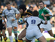 Wycombe, GREAT BRITAIN,  Danny CIPRIANI, running with the ball,  during the Heineken Cup [Pool 1]  Rugby Match,  London Wasps vs Castres Olympique, played at Adams Park Stadium on Sun, 12.10.2008 [Photo, Peter Spurrier/Intersport-images]