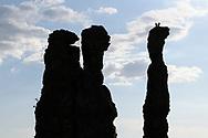 Zwei Rabengeier (Coragyps atratus) auf Felsformationen in der Chapada dos Guimaraes, Brasilien<br /> <br /> Two black vultures (Coragyps atratus) on rock formations in Chapada dos Guimaraes, Brazil
