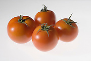 Ripe greenhouse tomato on white background