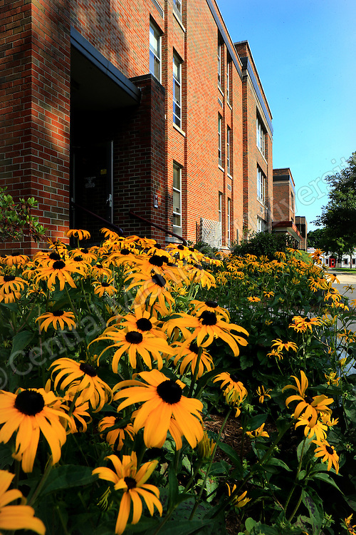 Summer scenics on the campus of Central Michigan University. Photo by Steve Jessmore/Central Michigan University