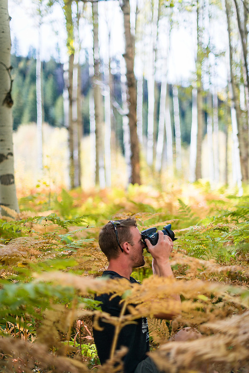 Draper photographing the aspen grove, CO