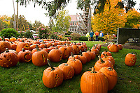 Pumpkins gathered at Veteran's Square ready to be loaded onto the Tower for Saturday's Pumpkin Fest.  (Karen Bobotas/for the Laconia Daily Sun)