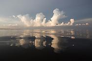 Lake Maurepas, a brackish tidal estuarine sytem is south Louisiana