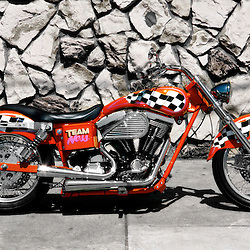 Arlen Ness custom bike 1994