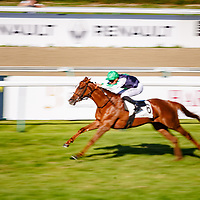 Chancellor (H. Journiac) wins Prix De Lonray in Deauville, France 15/08/2017, photo: Zuzanna Lupa