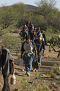 A group of 42 undocumented migrants, who crossed into the U.S. from Mexico on to the Tohono O'odham Nation, moves through the Sonoran Desert east of Sells and Little Tucson, Arizona, USA.  The group moved without the presence of the Border Patrol or other law enforcement agency.