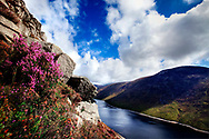 Photographer: Paul Lindsay, Ben Crom Mournes, County Down