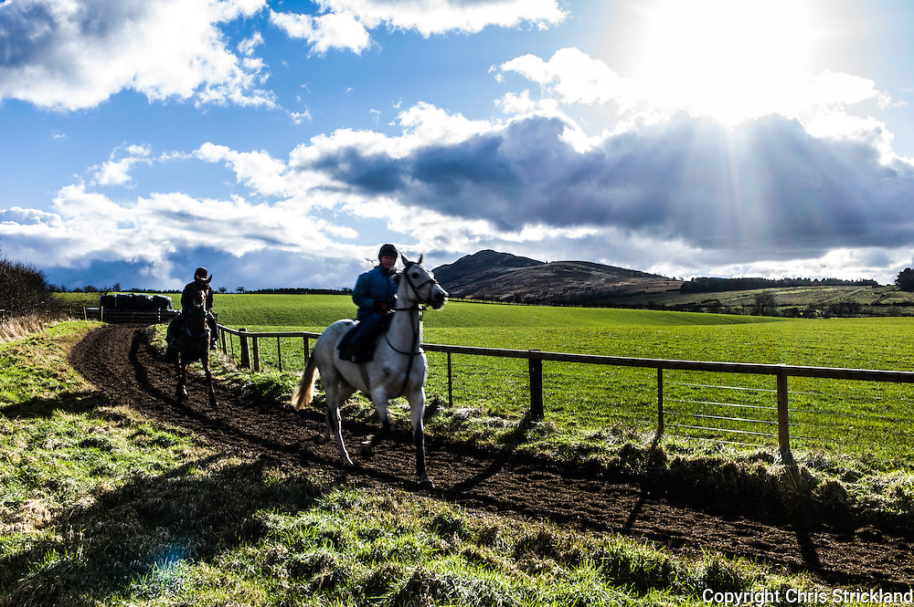 Denholm, Hawick, Scottish Borders, UK. 23rd February 2016. Jockey Joanna Walton puts National Hunt racehorse Carters Rest (right) through his paces on the gallops with Ruberslaw hill as a backdrop, accompanied by trainer Di Walton riding Point to Pointer Oscar Stanley.