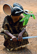 Tribal dancer with elephant headdress, Bamenda, Cameroon, Africa