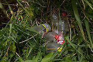 Achtergelaten lege plastic flessen in natuurgebied. Abandoned empty plastic bottles in nature.