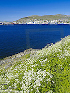 Hammerfest, city view, Norway, Finnmark