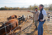 Emile DeFelice, pig farmer at Caw Caw Creek, discusses the marketing of his herd with Eufren Ninancuro, Master Swineherder in St. Matthews, outside of Columbia, South Carolina.