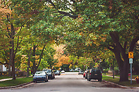 Traditional Neighborhood streets (Lincoln Street) in Traverse City, Michigan on October 13, 2018 (Gary L Howe)