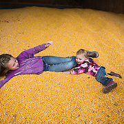 "Tabby DeJong, 8, has fun with her sister Mieke, 2, in a large bin of corn used as feed for the cows on the DeJong family's diary, Eaglemill Farms, near Lynden. The third generation farm is part of the Darigold farmer-owned cooperative. Farmer Jon DeJong said there is no better way to raise his kids. ""They learn how to work. They get to play and they get to see and touch real animals,"" he said. (Joshua Trujillo, seattlepi.com)"