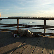 Person looking at homeless person lying on the boardwalk. Santa Barbara, CA.