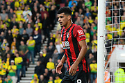 Dominic Solanke (9) of AFC Bournemouth during the Premier League match between Bournemouth and Norwich City at the Vitality Stadium, Bournemouth, England on 19 October 2019.