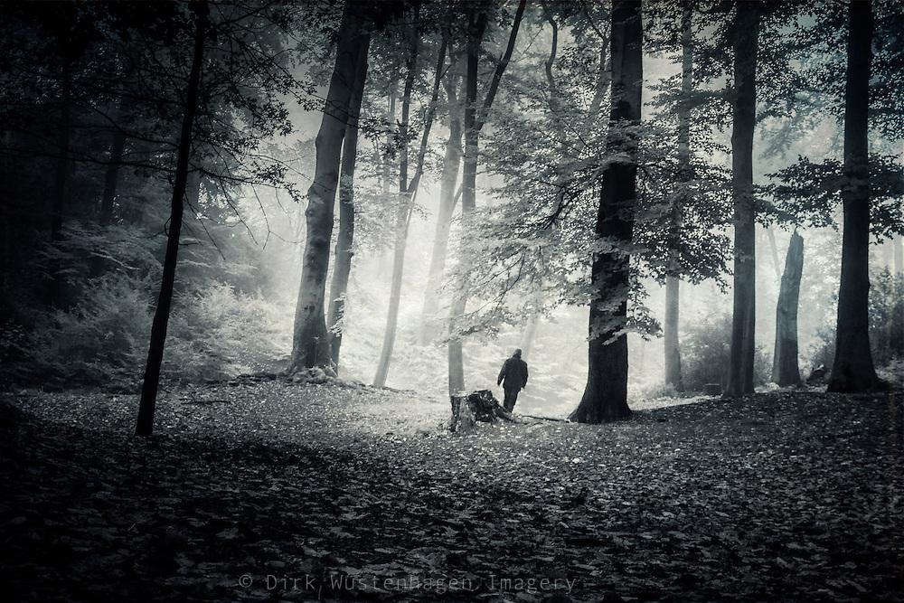 Man walking through a misty forest towards the light